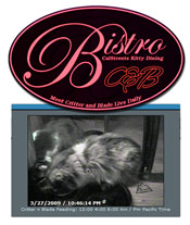 175Bistro-and-Video-Box-Cal.jpg