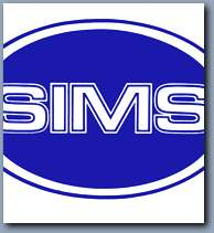 sims corporation wings blue_s.jpg